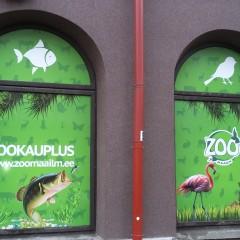 Aknakleebised ZOO kaupluse akendele