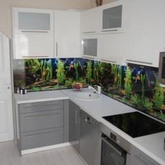 Akvaariumi pilt köögi tagaseinale