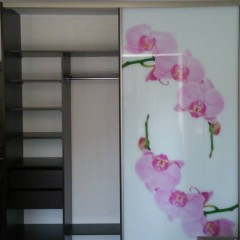 Шкаф купе с розовой орхидеей