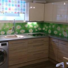 Karikakrad lepatriinudega köögi tagaseinal