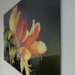 Fotoklaas lillega 6mm paksusega