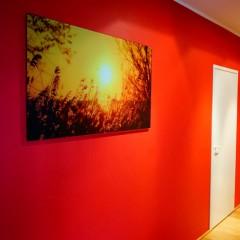 Päikeseloojang klaasil/Pilt ja paigaldus: Allan A. Abramson, Abramexx Studio